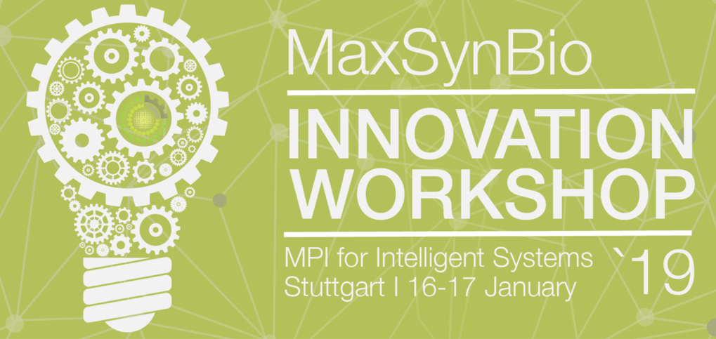 From fundamental research in synthetic biology towards applications - transferring technologies and methods. An innovative workshop at the MPI for Intelligent Systems in Stuttgart.