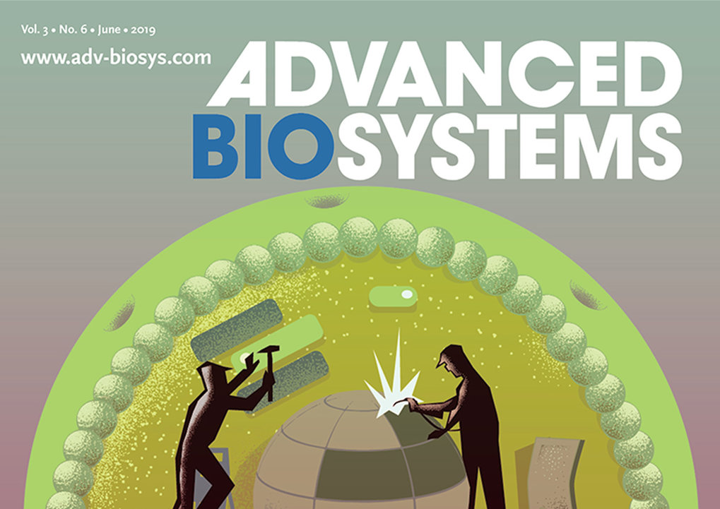 <span>July 2019<br /><br />We have compiled a collection of 12 articles in a special issue in Advanced Biosystems published this June. 42 authors from 8 different Max Planck and associated Universities from the Max Planck Synthetic Biology Network have contributed to this issue. Half of the manuscripts come from inter Max Planck Institutes collaborative work. These articles review the development of stepwise modular assembly of artificial cells from compartmentalization methods to mimicking metabolism, energy, growth, motility etc as well as their ethical and societal implications.</span>